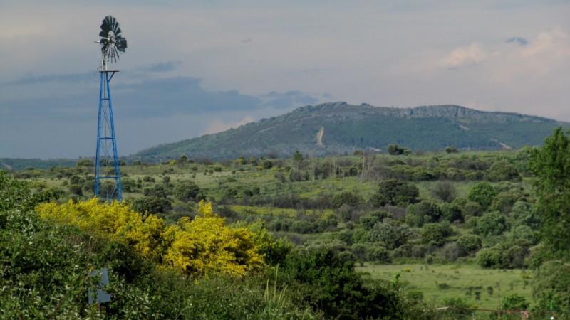 A Sierra de la Culebra Img_5909-800x600